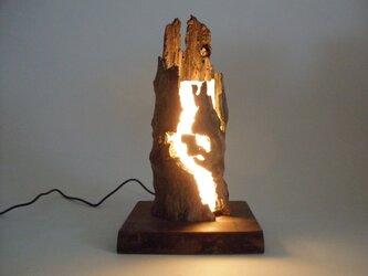 流木ランプ C  (LEDランプ)の画像