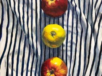 油彩画 『林檎』の画像