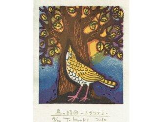 多色摺木版画「鳥の時間ートラツグミ」額付きの画像