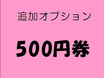 500円オプションの画像
