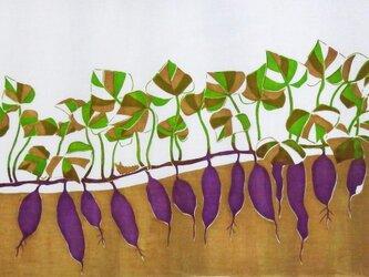 型染めてぬぐい「いもとむし」(赤紫)(綿100%・手染め捺染)の画像