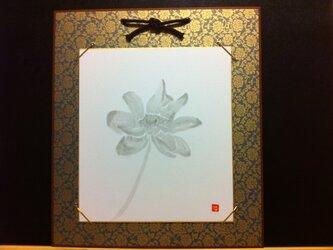 凛と佇む蓮の花の画像