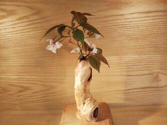 花飾樹 一輪挿し L05の画像