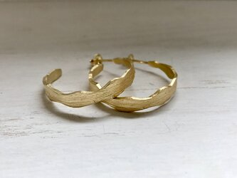 zamio goldの画像