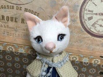 ビスコースの白猫 バニラの画像