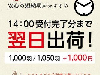お急ぎ 翌日出荷!(1000羽 / 1050羽)の画像