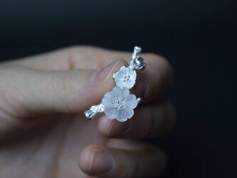 サンカヨウのブローチ シルバー 水晶 朝露を吸って花びらが透明になる美しい花「サンカヨウ」の画像