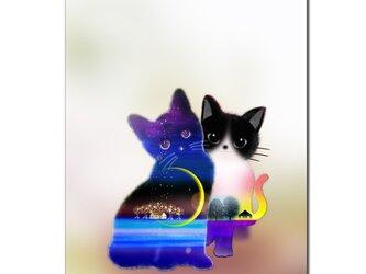 「なかよしニャン」 ほっこり癒しのイラストポストカード2枚組No.731の画像