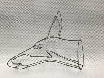ドーベルマンの画像
