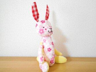 桜ピンクのうさぎの画像