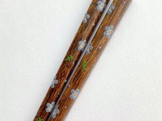 《再販/リニューアル》摺り漆の箸 〈漆絵・ネモフィラ〉の画像