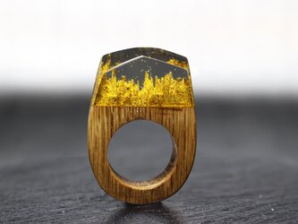 【送料無料】El Dorado ~Resin Wood Ring~の画像