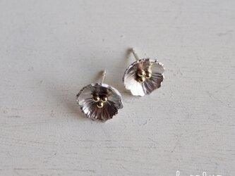 【再販】− Silver − Anemoneピアスの画像