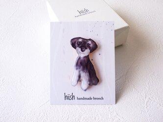 犬くん シュナウザー(ボックス入)の画像