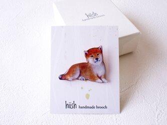 犬くん 柴犬(ボックス入)の画像