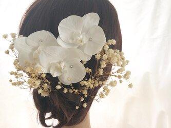 【プリザーブドフラワー/本当の胡蝶蘭とかすみ草の髪飾りヘッドドレス】の画像