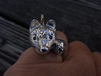 キタキツネの子指輪とチャームの画像