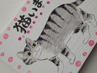 猫います。 猫プレート。グレーのキジトラ模様の画像