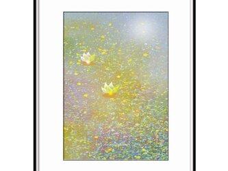 「ココロが落ち着く場所」 ほっこり癒しのイラストA4サイズポスターNo.645の画像