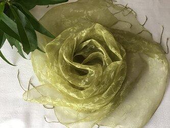 【桃の葉染め】シルクオーガンジーストール(花模様)鶸色(ひわいろ)の画像