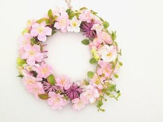 桜のリースの画像