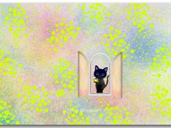 「ミモザから愛をこめて」 ほっこり癒しのイラストポストカード2枚組No.741の画像