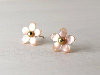 桜のピンクシェルピアス☆14KGFの画像