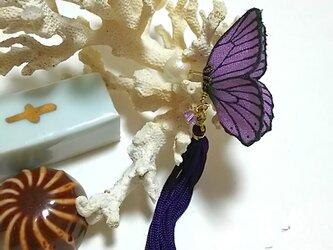 蝶のピアス (小) モルフォの画像