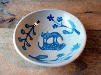 猫と犬の仲良し皿の画像