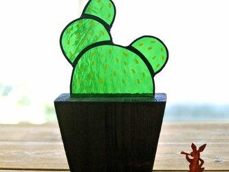 ステンドグラスのサボテン  ステイン仕上げ 玉サボテンの画像