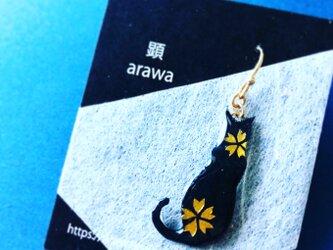 桜黒ネコ【永遠に咲き誇るSakuraシリーズ】の画像