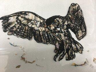 ミミズク/take wingsの画像