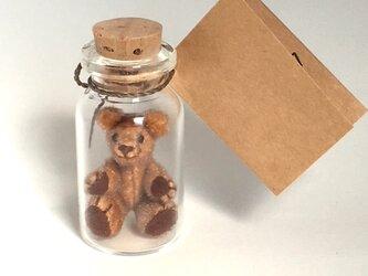 2017年4月10日 Bottled Bearの画像