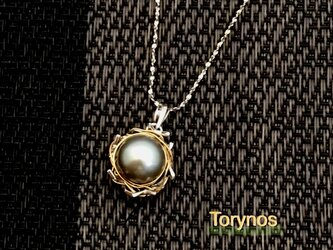 Torynos P(トリノスペンダント)の画像