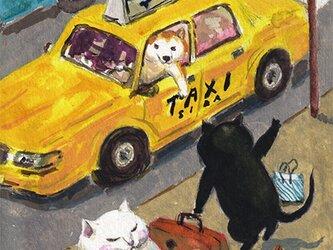 カマノレイコ オリジナル猫ポストカード「タクシー」2枚セットの画像