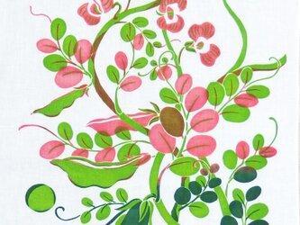 型染めてぬぐい「うきうきまめと浮かぶうたたね」(グリーン/ピンク)(綿100%・手染め捺染)の画像