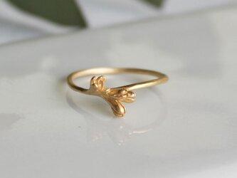 オリーブの花のリングの画像