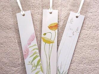 草花のしおり 3枚セットの画像