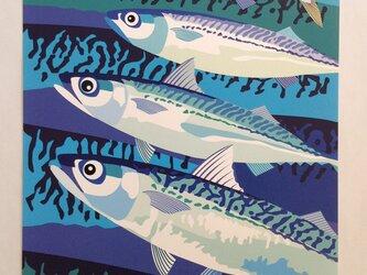 A3サイズポスタ− 真鯖  (フレ−ムなし)の画像