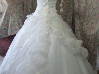 オーガンジードレスの画像