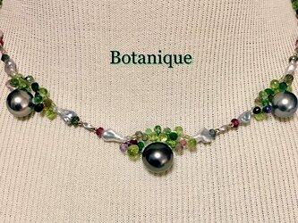 Botanique(ボタニーク)の画像