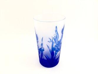グラジオラス(瑠璃グラス工芸品)の画像