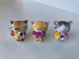 大好きだよ!花束猫さん(黄トラ×カーネーション)の画像