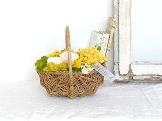 ジャルダン(バラとミモザとパンジー)☆5月11・12日着ご希望の方は、5月3日までにご注文下さい!の画像