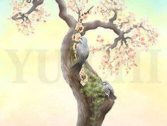 フルスクリーンB5ポスター「梅木にヒヨドリ」(額装済み)の画像