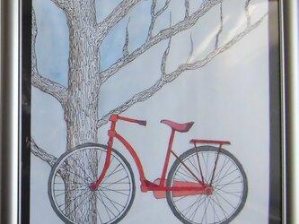 冬のイチョウと赤い自転車の画像