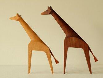 キリンさんのカップル ( ウォールナットジラフ & オークジラフ)の画像