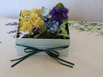 布花のSpring flower box S -1の画像