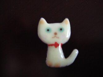 七宝 チョコンとお座り白猫ちゃんの画像