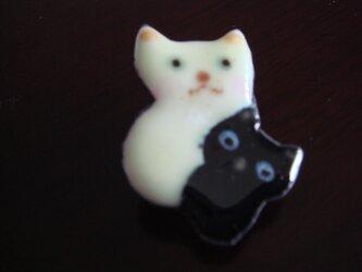 七宝 仲良しピッタンコ猫の画像